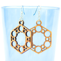 Ring of Circles in Hexagon Earrings